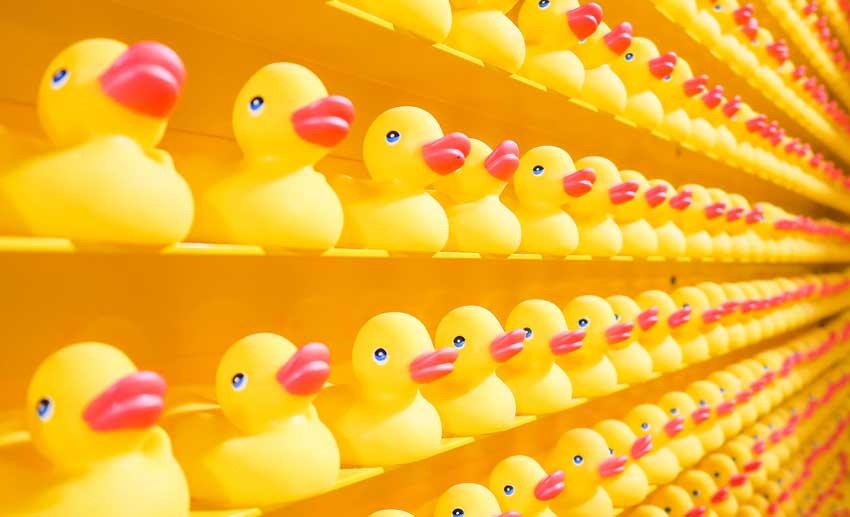 اردک های زرد رنگ اسباب بازی
